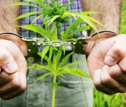 Man in handcuffs - drug crime
