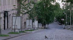wpid-170854_deytishina.jpg