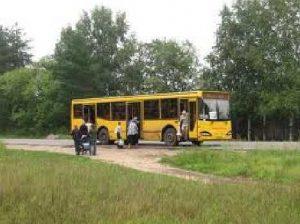 wpid-186989_transport_dacha.jpg