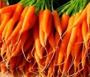 По-простому: морковный салат с майонезом и чесноком