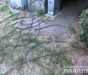 кабелі